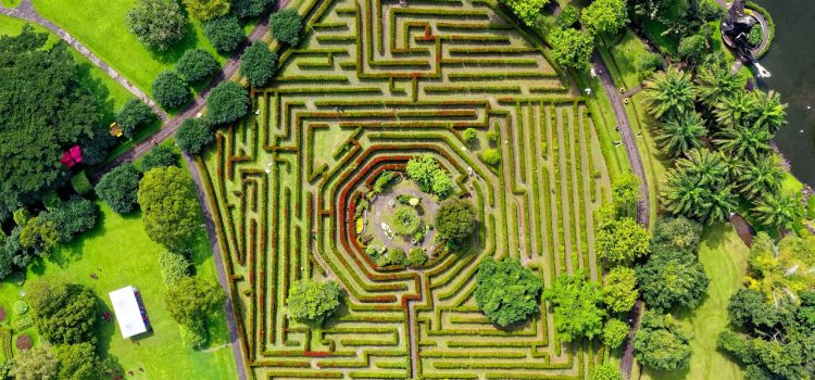 IS LIFE A LABYRINTH?